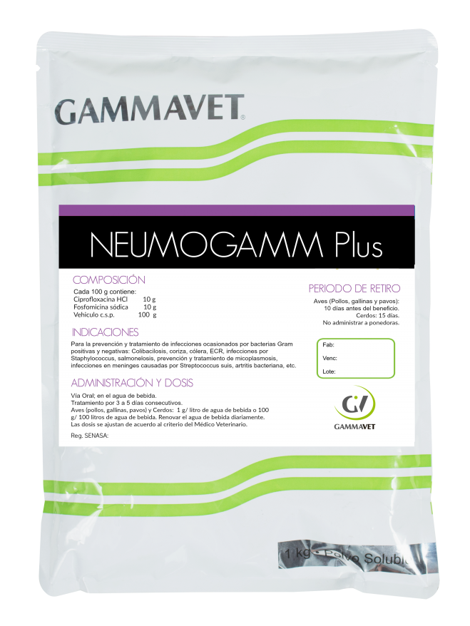 NEUMOGAMM PLUS